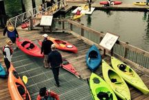 Kayaking Willapa Harbor! / Grab your paddles and hit the Willapa!