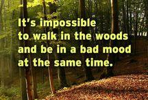 Words of Wisdom / Words to be inspired & live by. www.meadowsfarms.com