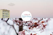 Spring / #spring #primavera #ideasprimavera