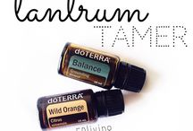 Doterra recipes