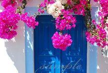 Çiçekli yollar