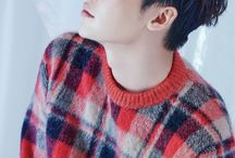 Lee Jong Suk (이종숙)
