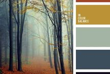 color schemics