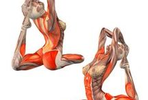 Yoga - pozycje
