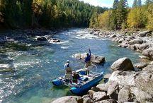 Elk River, BC / Pictures on the Elk River British Columbia