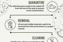 Cleaning and organizing Infographics / Here are the cleaning tips to make your home in singapore neat and bacteria free.