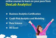 Online Courses - dexlabanalytics.com