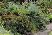 Jardines Rusticos