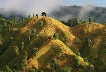 Bangladesh / by Leni Hester