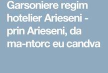 Garsoniere regim hotelier Arieseni