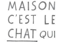 Chat ❤️❤️ / Ragdoll