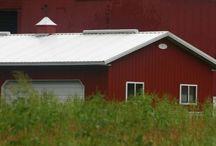 Barn Quilts / by Lori Jones