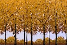 TREES. TREES. TREES. / by Kay Droege