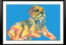 Border Terrier - Life is merrier / Border terriers -The Border Terrier is an alert, bold little hunter. Very agile