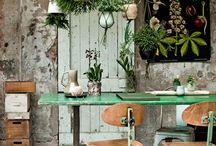 Living with PLANTS / Wer möchte nicht in einem Green House leben? Mit Pflanzen fühlen wir uns frisch und lebendig, als Teil der Natur. Pflanzen und Blumen sind wunderbare Dekorationsobjekte. Ob üppig oder spartanisch eingesetzt, sie entfalten immer eine grosse Wirkung. Wir lieben Gewächshäuser, hängende Gärten, antike Pflanzenprints. Mit Pflanzen wird unsere Wohnung zu einer Wohlfühloase und das tut der Seele gut.