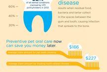 Pet Dentistry
