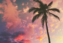 Paradise ♡