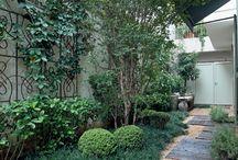 Outdoor, Terrace & Garden