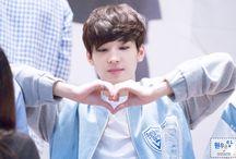 SVT || Wonwoo