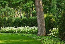 landschap - tuin architectuur