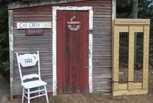 Chickens / Our Chicken Coop Hersey,Michigan