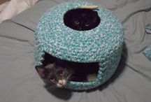 Pets: DIY Projects / DIY projects, tutorials and ideas of things to make for Cats, Dogs, Kittens, Puppies and more.