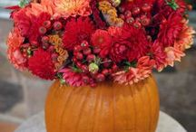 Fall is my Favorite / Decorating ideas for my favorite season!