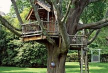 Magic Tree House / I have always loved tree houses! There is something magical about them, that offers a calm and relaxed state. Some of the one's out there are far from a child's club house. No matter what they are all amazing to see!