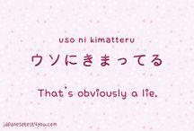 ✧ phrases ✧ / 日本語