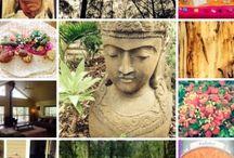 Retreats and Workshops / Retreats and Self-Development Workshops