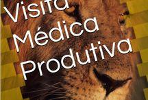eBook - Visita Médica Produtiva
