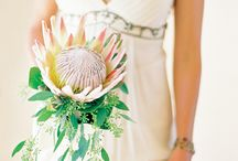 Beautiful bouquets.  / A gorgeous assortment of bouquets in a huge variety of style, colour schemes & themes. Something for everyone. Follow Maree Talidu for all your wedding inspiration.  / by Maree Talidu