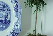 Bianco e blu / Ceramiche e porcellane