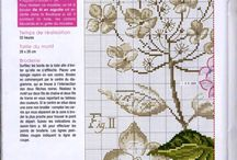Botanical cross stitch / Botanique au point de croix