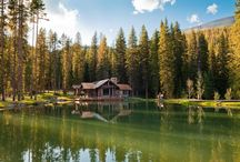 Cabin of My Dreams / by Heather Oberg