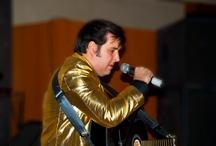 2013 Elvis Party