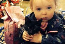 Petsmart Adoptions / Meet our adoptable kitties at Petsmart in McDonough Georgia and Roswell Georgia.