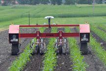 Tarım robot
