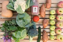 Fall CSA | Community Supported Agriculture / Fifer's 'Delmarva Box' CSA program offers a weekly box of high-quality fruits and veggies. Membership details: www.fiferorchards.com.