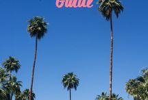 VISIT: PALM SPRINGS + JOSHUA TREE / Holidaying like Frank Sinatra...