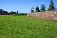 Lawn Solutions Australia / Lawn Solutions Australia - www.buffaloturf.com.au