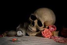 Botten schedel / plaatjes van alles botten van de schedel