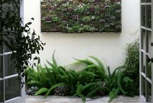 Herb gardens and outdoor areas