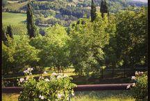 Tredozio (FC) #Romagna