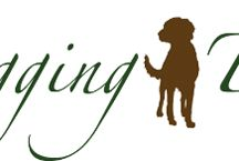 Home from Home Dog Boarding / The UK's finest alternative to kennels & house sitting. We give your dog a holiday of his own!