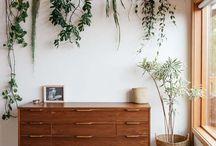 Sisusta kasveilla