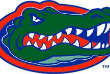 I bleed orange an blue / Florida Gators. UF I bleed orange an blue Go Gators / by Donna Barrett