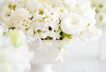 ls designs flowers