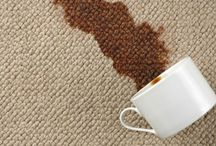 Brightcarpetcleaningcalgary / Bright carpet cleaning in calgary