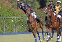 Torneos de julio 2015 / Primeros torneos de la Temporada de Verano 2015 de Santa María Polo Club Sotogrande